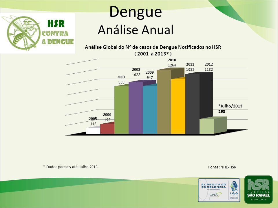Fonte: NHE-HSR * Dados parciais até Julho 2013 Dengue Análise Anual HSR