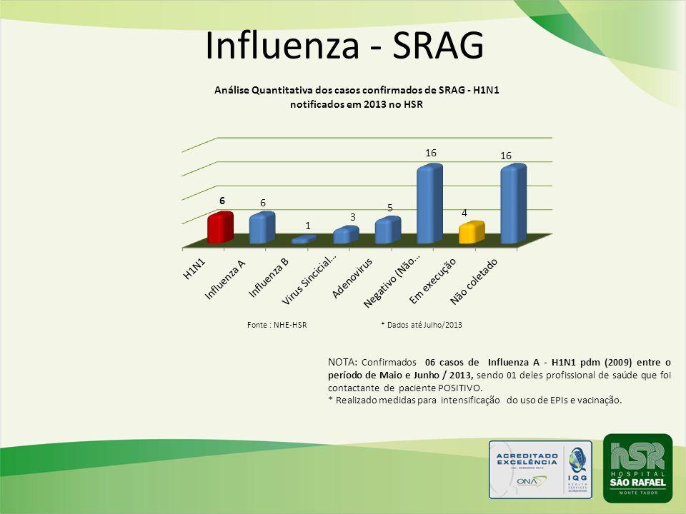 Influenza - SRAG NOTA: Confirmados 06 casos de Influenza A - H1N1 pdm (2009) entre o período de Maio e Junho / 2013, sendo 01 deles profissional de sa