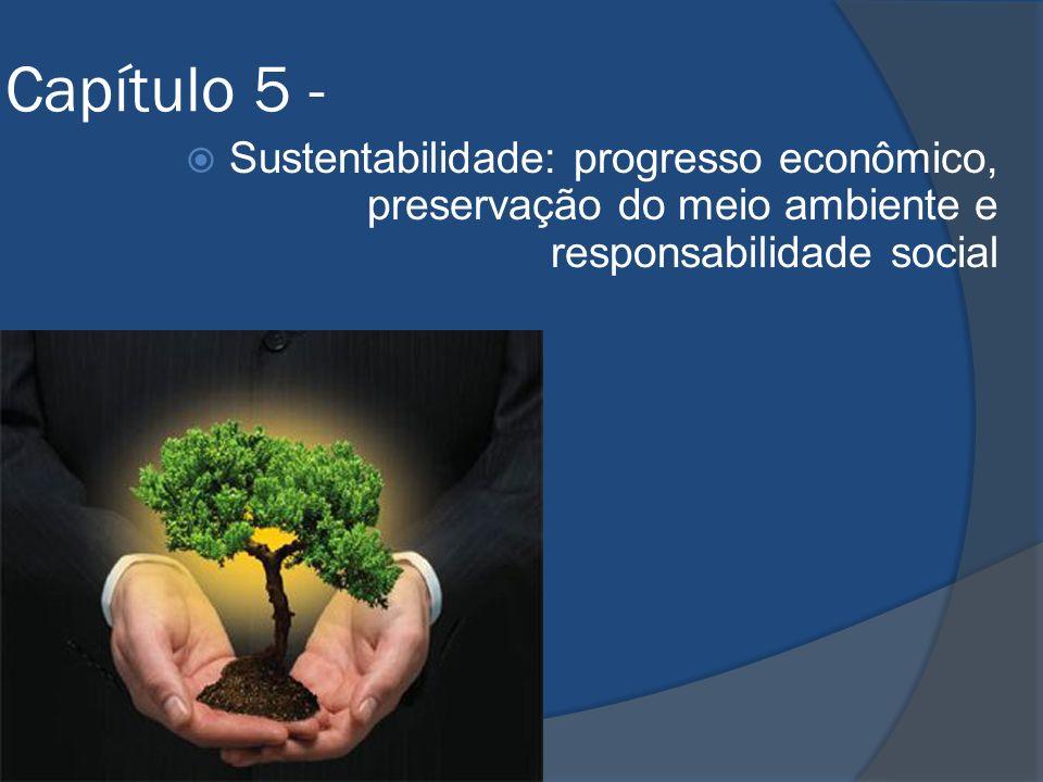 Capítulo 5 - Sustentabilidade: progresso econômico, preservação do meio ambiente e responsabilidade social
