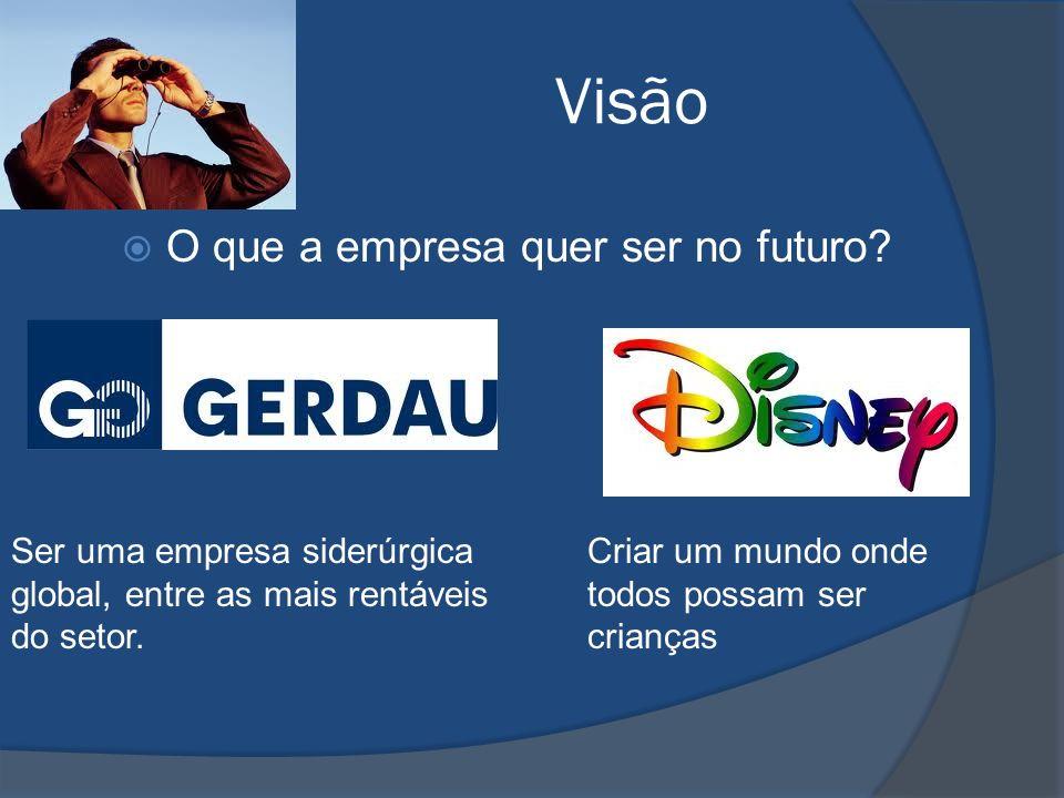 Visão O que a empresa quer ser no futuro.