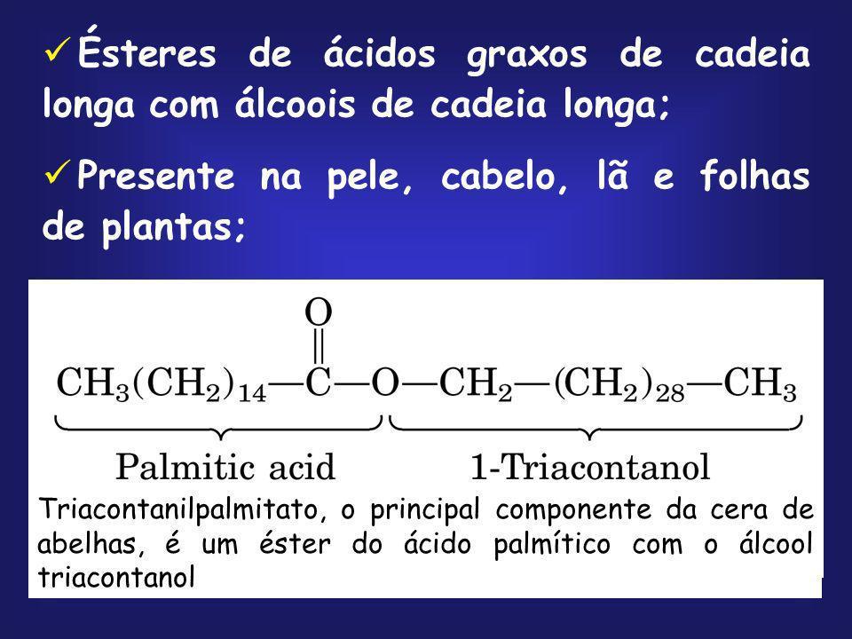 Ésteres de ácidos graxos de cadeia longa com álcoois de cadeia longa; Presente na pele, cabelo, lã e folhas de plantas; Triacontanilpalmitato, o princ