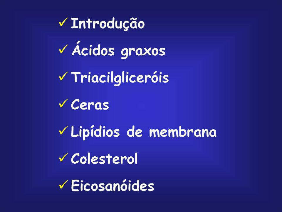 Ésteres de ácidos graxos de cadeia longa com álcoois de cadeia longa; Presente na pele, cabelo, lã e folhas de plantas; Triacontanilpalmitato, o principal componente da cera de abelhas, é um éster do ácido palmítico com o álcool triacontanol