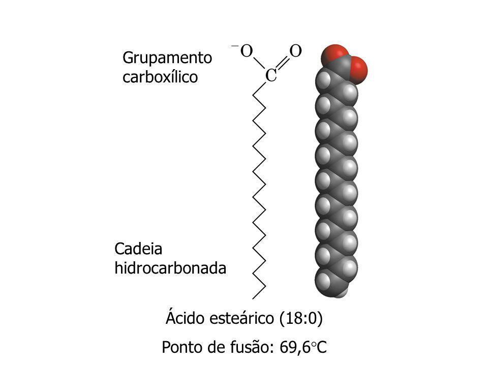 Lipídios de armazenamento (neutros) Lipídios de membrana (polares) Triacilgliceróis Fosfolipídios Glicerofosfolipídios Esfingolipídios Glicolipídios Ácidos graxos glicerol esfingosina