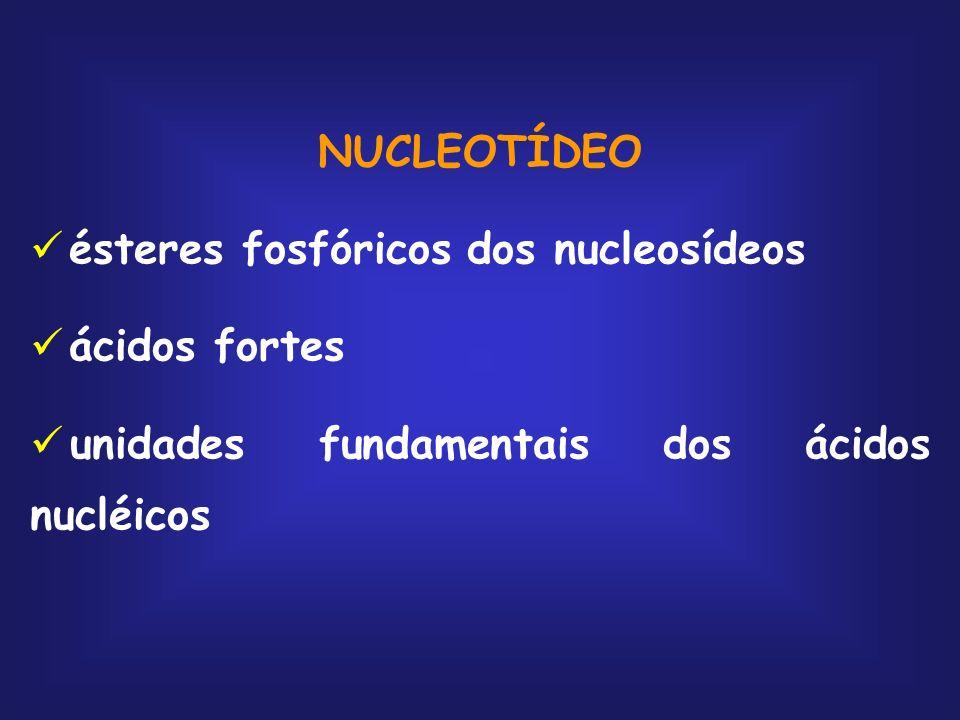 NUCLEOTÍDEO ésteres fosfóricos dos nucleosídeos ácidos fortes unidades fundamentais dos ácidos nucléicos