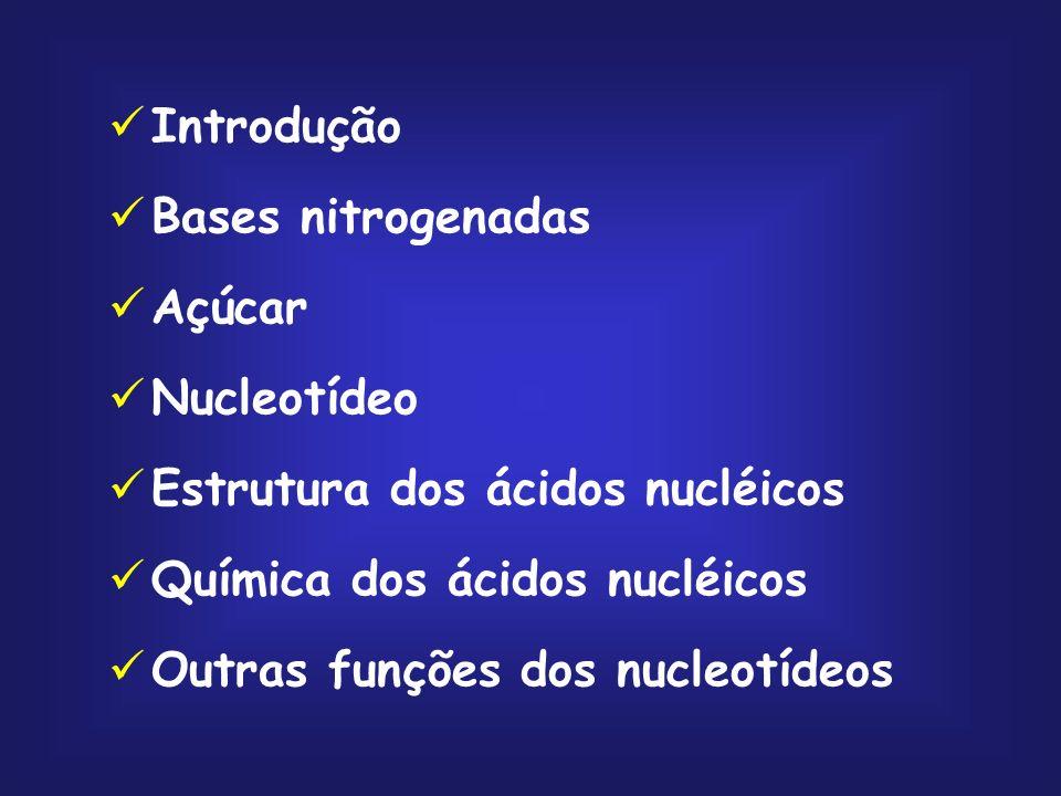Introdução Bases nitrogenadas Açúcar Nucleotídeo Estrutura dos ácidos nucléicos Química dos ácidos nucléicos Outras funções dos nucleotídeos