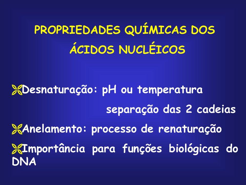 PROPRIEDADES QUÍMICAS DOS ÁCIDOS NUCLÉICOS Desnaturação: pH ou temperatura separação das 2 cadeias Anelamento: processo de renaturação Importância par