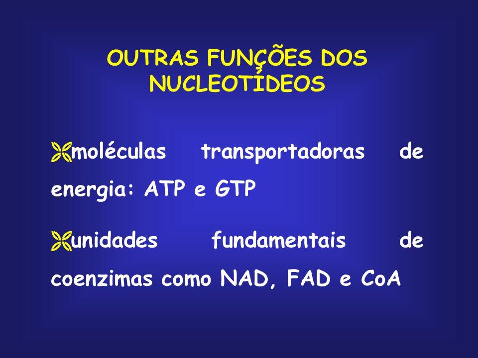 OUTRAS FUNÇÕES DOS NUCLEOTÍDEOS moléculas transportadoras de energia: ATP e GTP unidades fundamentais de coenzimas como NAD, FAD e CoA