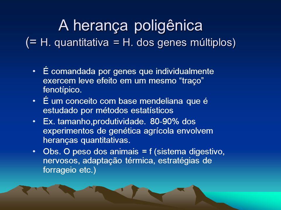 A herança poligênica (= H. quantitativa = H. dos genes múltiplos) É comandada por genes que individualmente exercem leve efeito em um mesmo traço feno