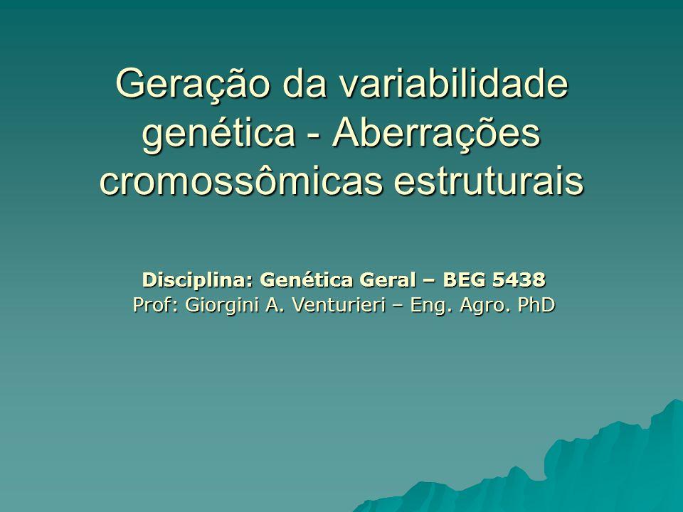 Aberrações cromossômicas estruturais Resultam de quebra cromossômica seguida de reconstituição em uma combinação anormal
