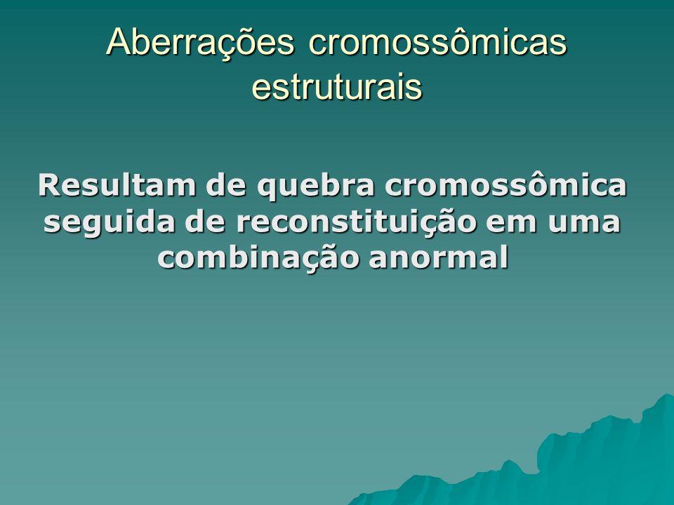 Translocação Robertsoniana Ocorrem quando dois cromossomos acrocêntricos (em humanos os cromossomos 13, 14, 15, 21 e 22) perdem seus braços curtos e se unem próximo à região centromérica, formando um único cromossomo derivado Ocorrem quando dois cromossomos acrocêntricos (em humanos os cromossomos 13, 14, 15, 21 e 22) perdem seus braços curtos e se unem próximo à região centromérica, formando um único cromossomo derivado Síndrome de Down (trissomia do 21 - 96% dos casos) mas pode ser também devido a translocação entre os cromossomas 14 e 21, gerando um cromossomo híbrido Síndrome de Down (trissomia do 21 - 96% dos casos) mas pode ser também devido a translocação entre os cromossomas 14 e 21, gerando um cromossomo híbrido Síndrome de Down Síndrome de Down