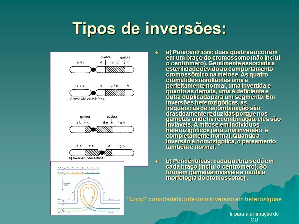 Tipos de inversões: a) Paracêntricas: duas quebras ocorrem em um braço do cromossomo (não inclui o centrômero). Geralmente associada a esterilidade de