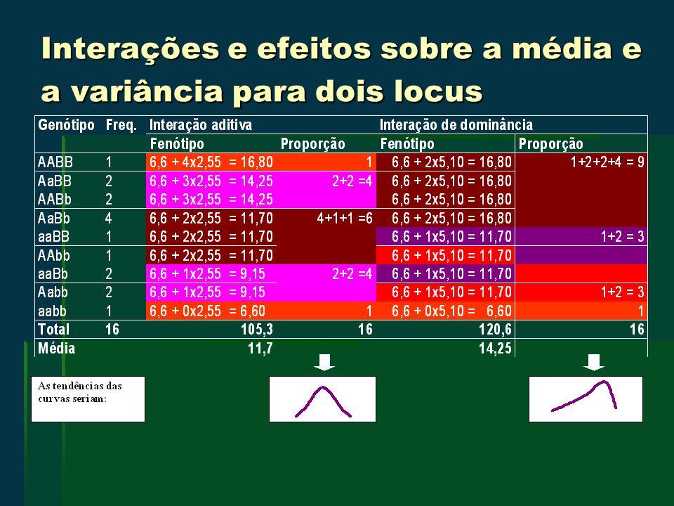 Interações e efeitos sobre a média e a variância para dois locus