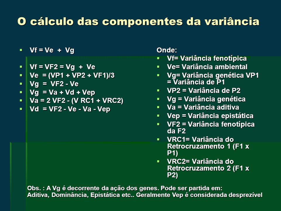 O cálculo das componentes da variância Vf = Ve + Vg Vf = Ve + Vg Vf = VF2 = Vg + Ve Vf = VF2 = Vg + Ve Ve = (VP1 + VP2 + VF1)/3 Ve = (VP1 + VP2 + VF1)/3 Vg = VF2 - Ve Vg = VF2 - Ve Vg = Va + Vd + Vep Vg = Va + Vd + Vep Va = 2 VF2 - (V RC1 + VRC2) Va = 2 VF2 - (V RC1 + VRC2) Vd = VF2 - Ve - Va - Vep Vd = VF2 - Ve - Va - VepOnde: Vf= Variância fenotípica Vf= Variância fenotípica Ve= Variância ambiental Ve= Variância ambiental Vg= Variância genética VP1 = Variância de P1 Vg= Variância genética VP1 = Variância de P1 VP2 = Variância de P2 VP2 = Variância de P2 Vg = Variância genética Vg = Variância genética Va = Variância aditiva Va = Variância aditiva Vep = Variância epistática Vep = Variância epistática VF2 = Variância fenotípica da F2 VF2 = Variância fenotípica da F2 VRC1= Variância do Retrocruzamento 1 (F1 x P1) VRC1= Variância do Retrocruzamento 1 (F1 x P1) VRC2= Variância do Retrocruzamento 2 (F1 x P2) VRC2= Variância do Retrocruzamento 2 (F1 x P2) Obs.