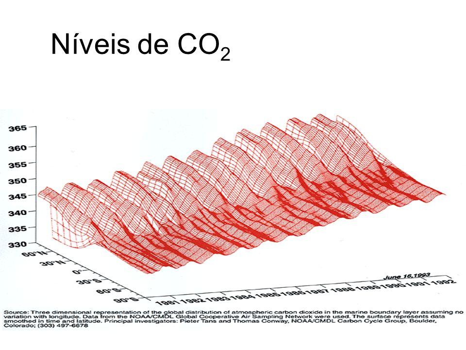 Níveis de CO 2