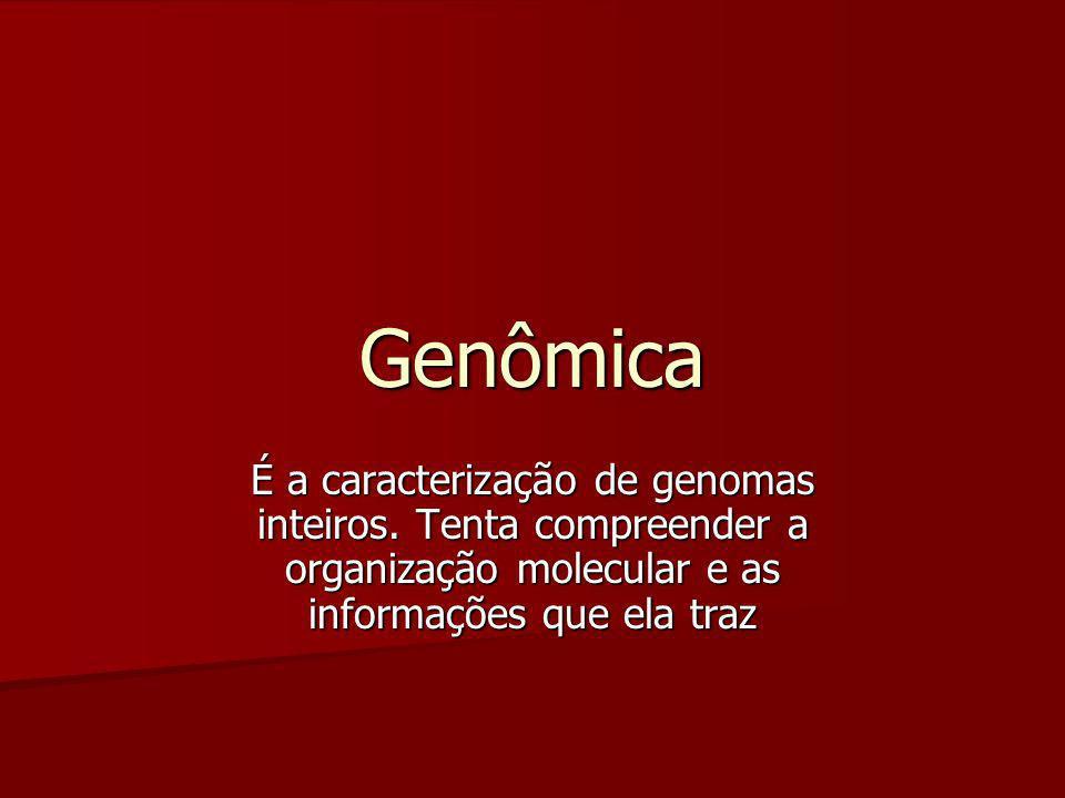 Genômica É a caracterização de genomas inteiros. Tenta compreender a organização molecular e as informações que ela traz