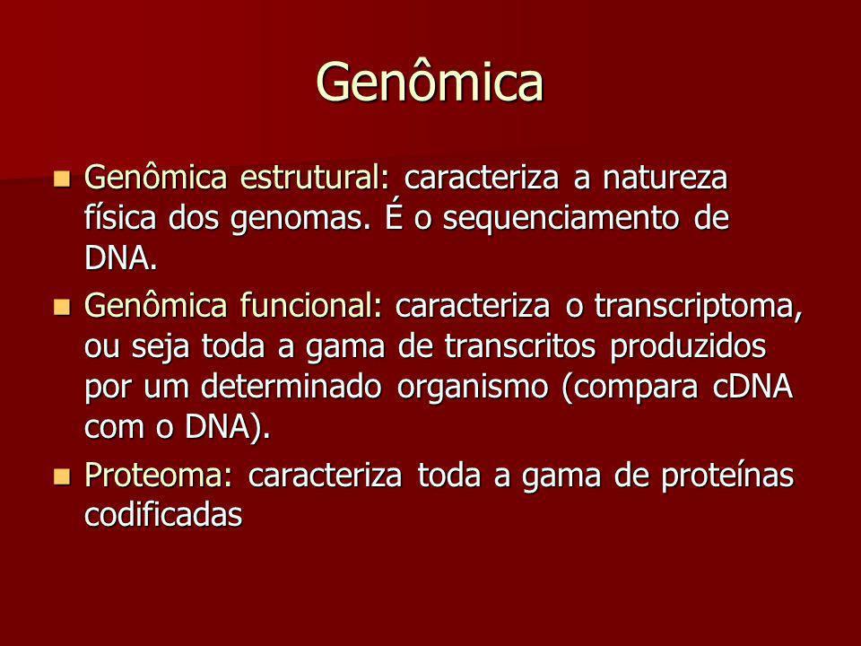 Genômica Genômica estrutural: caracteriza a natureza física dos genomas. É o sequenciamento de DNA. Genômica estrutural: caracteriza a natureza física