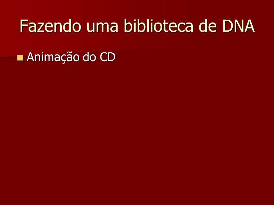 Fazendo uma biblioteca de DNA Animação do CD Animação do CD
