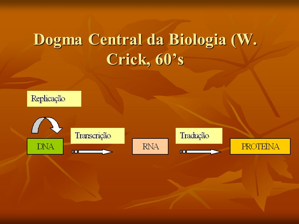 Dogma Central da Biologia (W. Crick, 60s