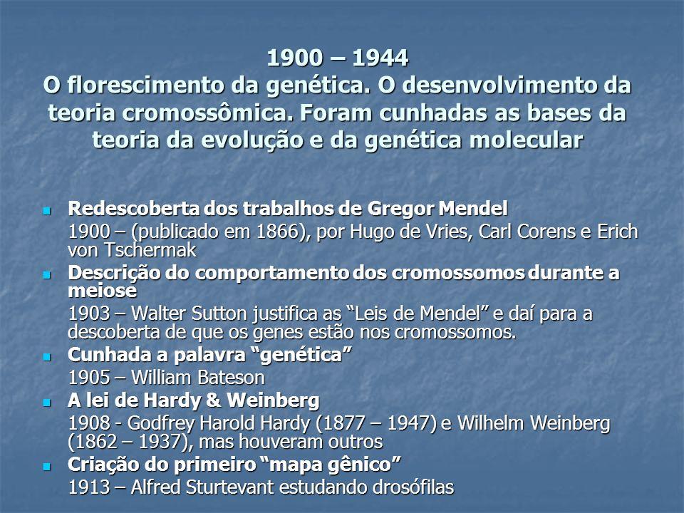 1900 – 1944 O florescimento da genética. O desenvolvimento da teoria cromossômica. Foram cunhadas as bases da teoria da evolução e da genética molecul