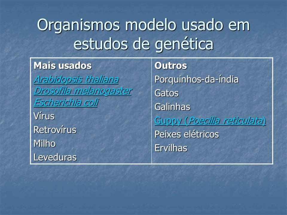 Organismos modelo usado em estudos de genética Mais usados Arabidopsis thaliana Drosofila melanogaster Escherichia coli Arabidopsis thaliana Drosofila