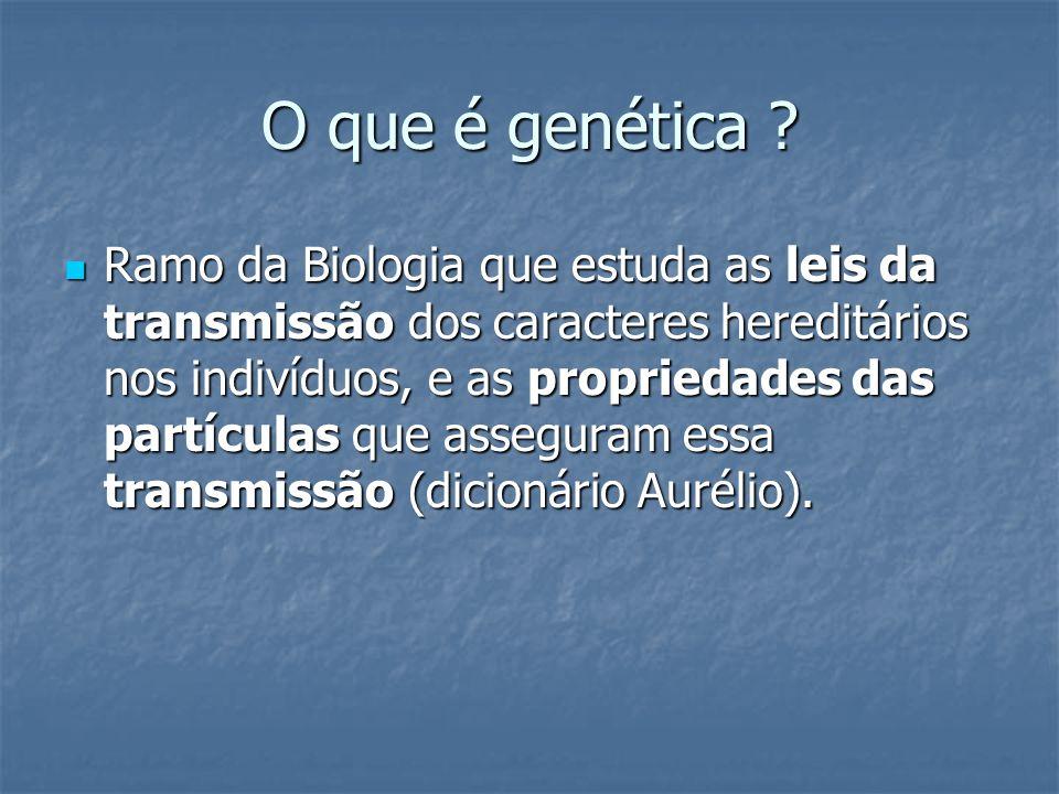 Hereditariedade O processo da hereditariedade, ao mesmo tempo em que mantém semelhanças, também originam mudanças.