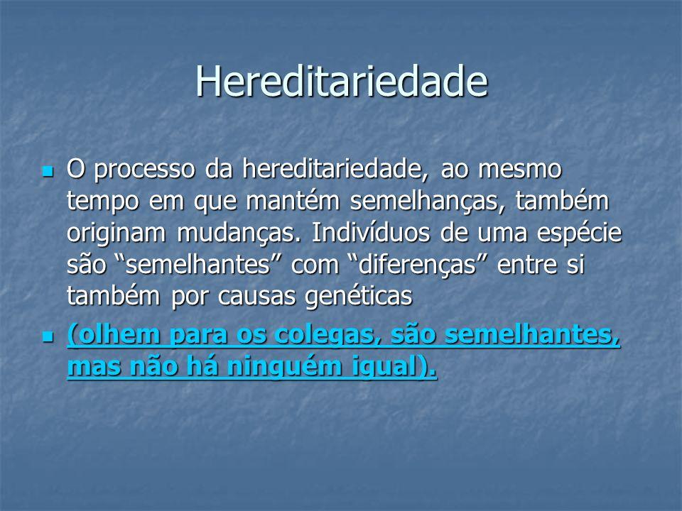Hereditariedade O processo da hereditariedade, ao mesmo tempo em que mantém semelhanças, também originam mudanças. Indivíduos de uma espécie são semel