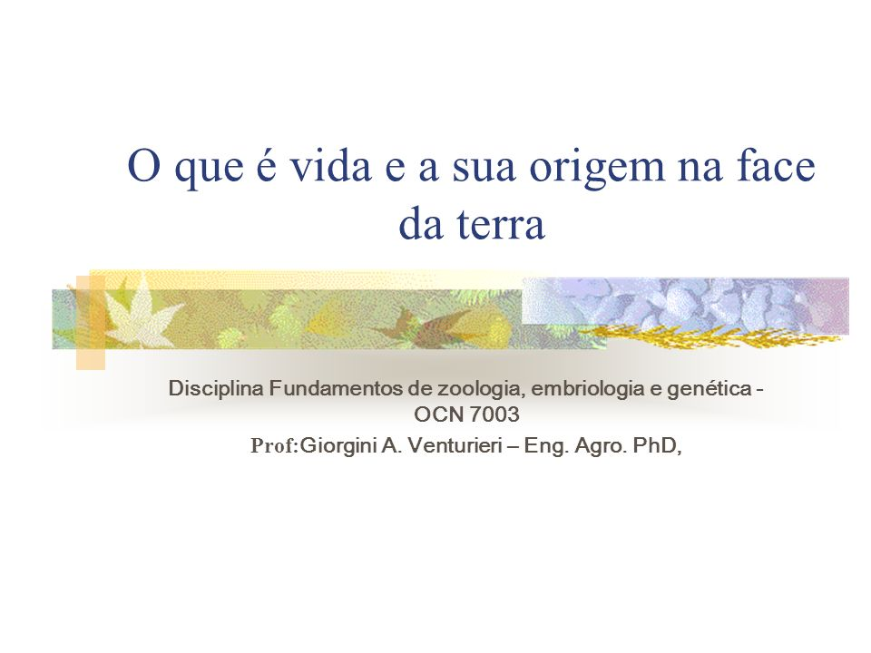 O que é vida e a sua origem na face da terra Disciplina Fundamentos de zoologia, embriologia e genética - OCN 7003 Prof: Giorgini A. Venturieri – Eng.