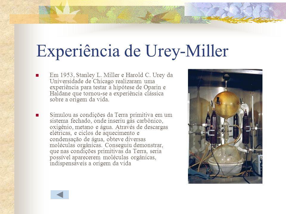 Experiência de Urey-Miller Em 1953, Stanley L. Miller e Harold C. Urey da Universidade de Chicago realizaram uma experiência para testar a hipótese de
