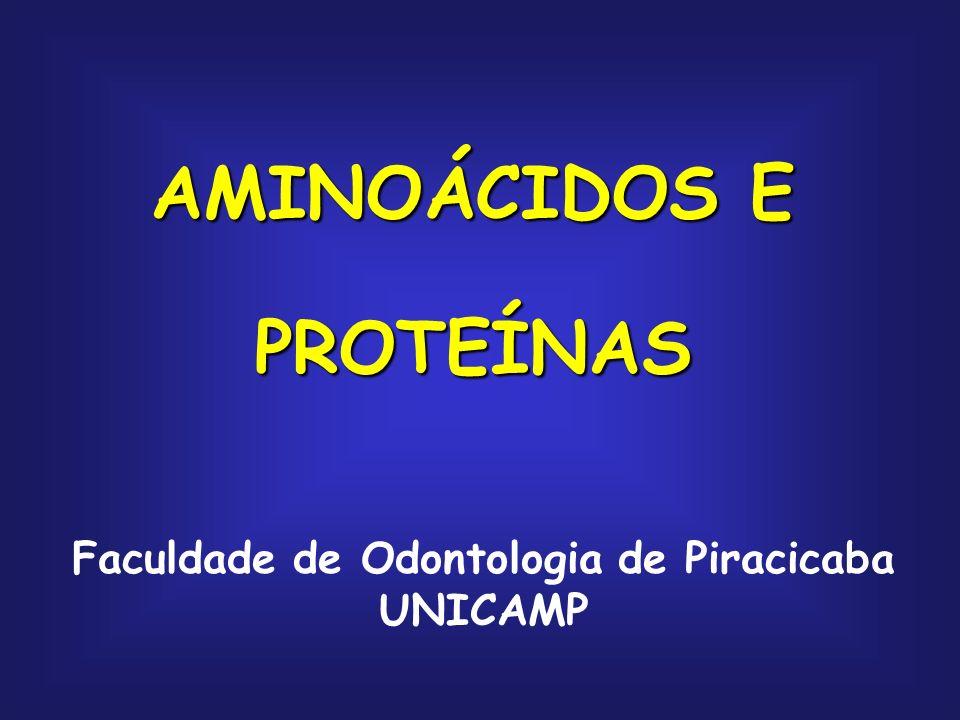AMINOÁCIDOS E PROTEÍNAS Faculdade de Odontologia de Piracicaba UNICAMP