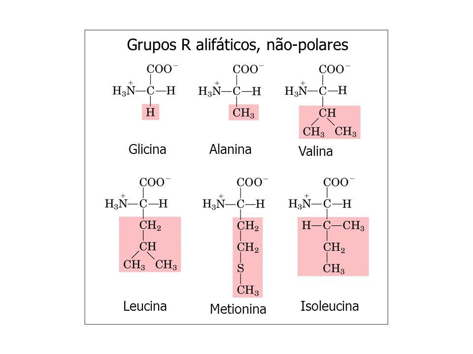 L-gliceraldeído D-gliceraldeído L-alaninaD-alanina