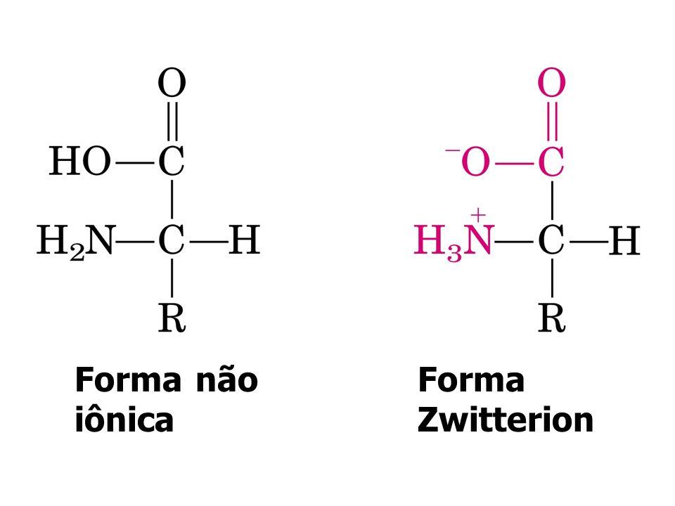 Ornitina Citrulina Aminoácidos Especiais Encontrados no ciclo da uréia