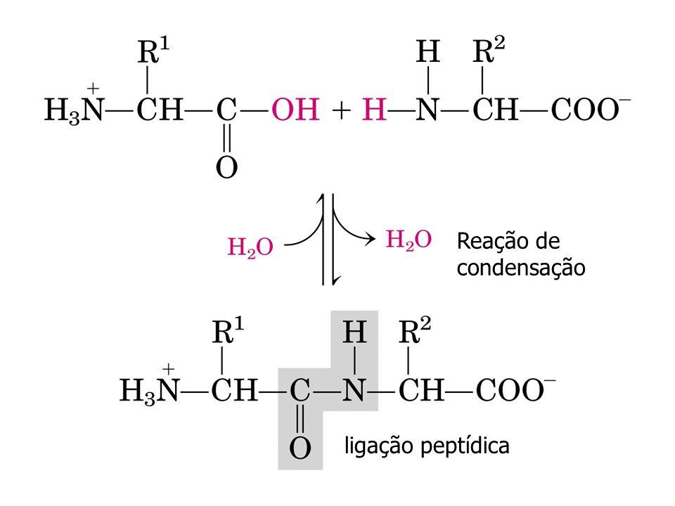 glicina A figura ao lado mostra a curva de titulação da glicina. As espécies iônicas predominantes nos pontos chaves da titulação estão apresentadas a