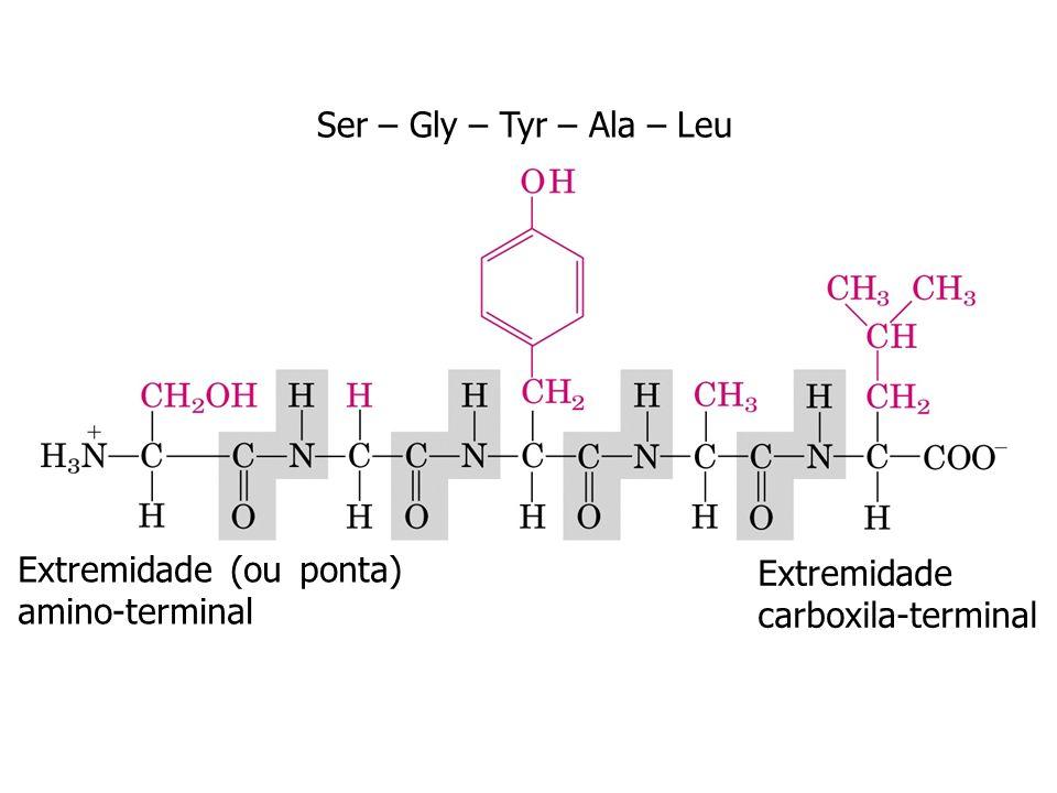 Reação de condensação ligação peptídica