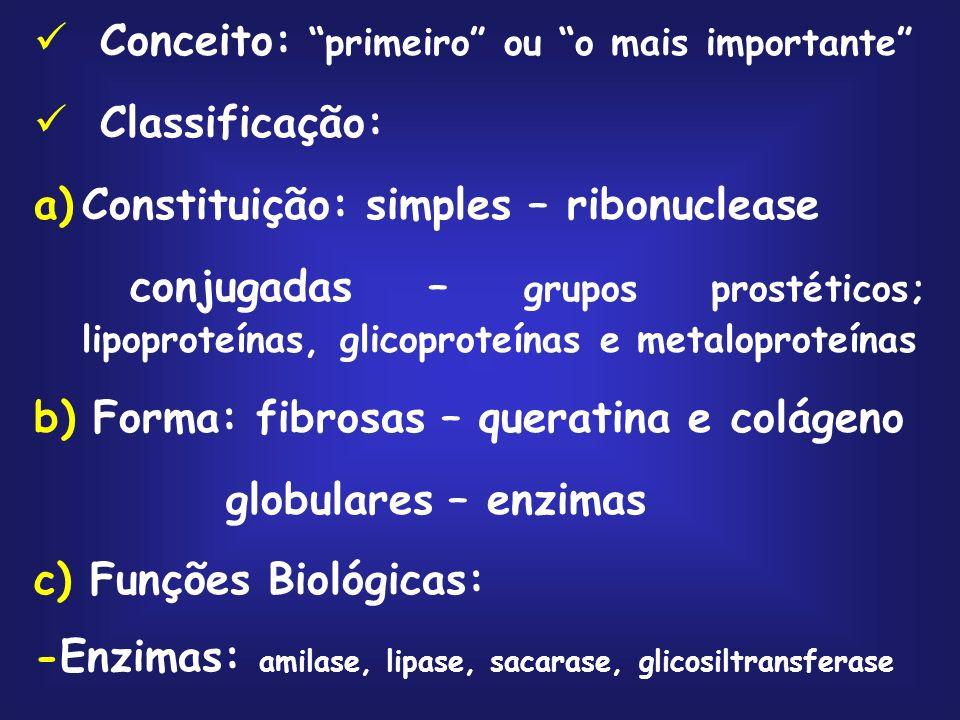 Conceito: primeiro ou o mais importante Classificação: a)Constituição: simples – ribonuclease conjugadas – grupos prostéticos; lipoproteínas, glicoproteínas e metaloproteínas b) Forma: fibrosas – queratina e colágeno globulares – enzimas c) Funções Biológicas: -Enzimas: amilase, lipase, sacarase, glicosiltransferase