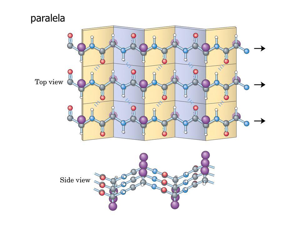 Conformação Pontes de hidrogênio antiparalela