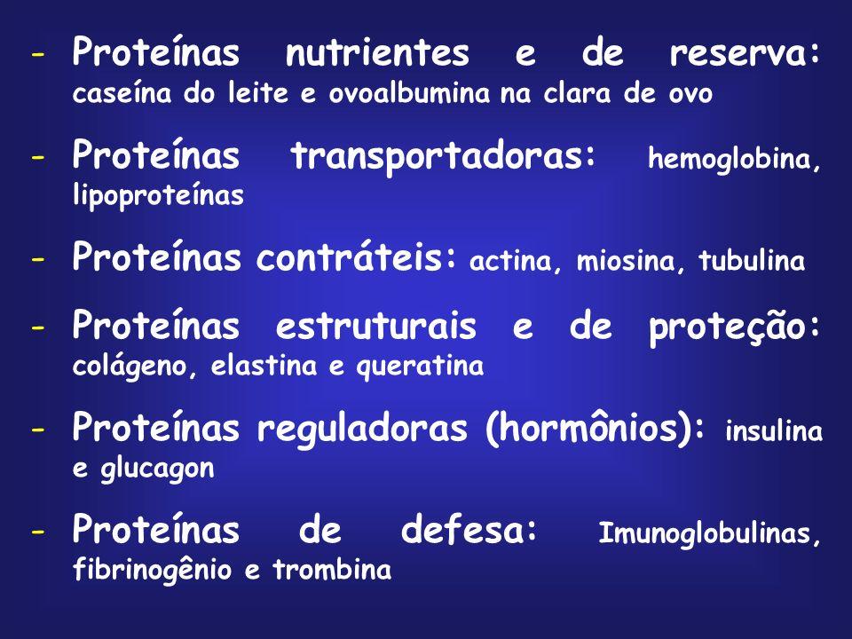 -Proteínas nutrientes e de reserva: caseína do leite e ovoalbumina na clara de ovo -Proteínas transportadoras: hemoglobina, lipoproteínas -Proteínas contráteis: actina, miosina, tubulina -Proteínas estruturais e de proteção: colágeno, elastina e queratina -Proteínas reguladoras (hormônios): insulina e glucagon -Proteínas de defesa: Imunoglobulinas, fibrinogênio e trombina