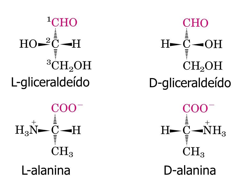 Estrutura primária Estrutura secundária Resíduos de aminoácidos -hélice Refere-se a arranjos particularmente estáveis dos resíduos de aminoácidos dando origem a certos padrões estruturais.