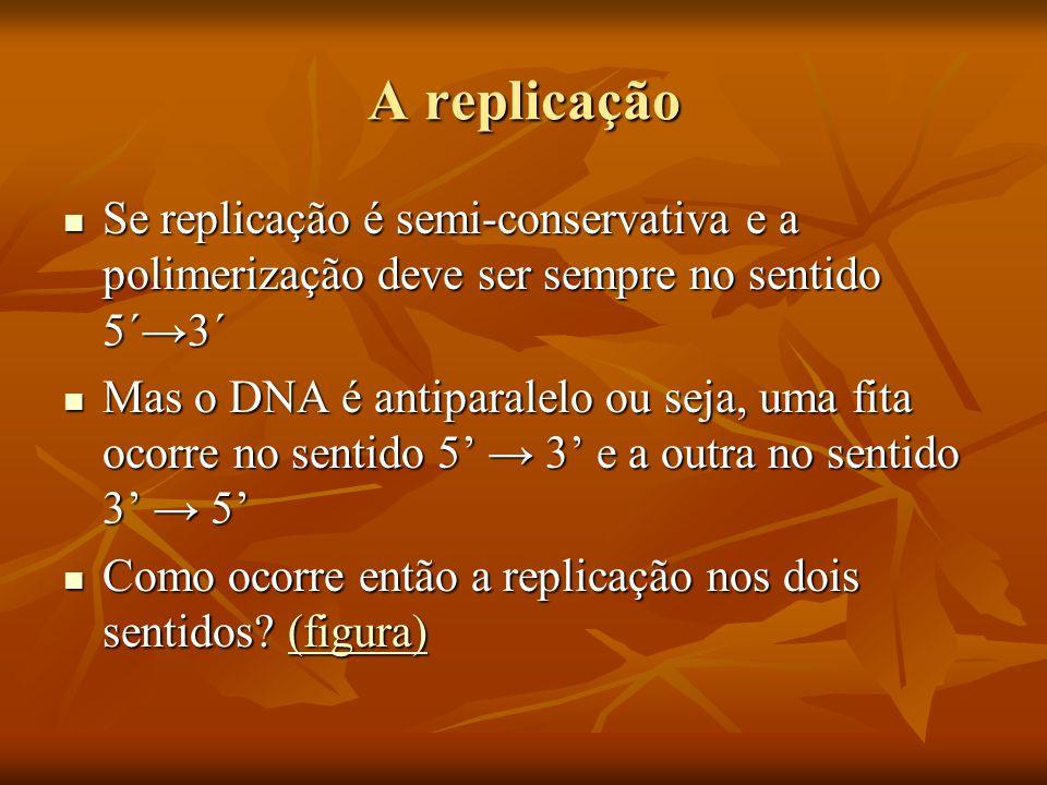 A replicação Se replicação é semi-conservativa e a polimerização deve ser sempre no sentido 5´3´ Se replicação é semi-conservativa e a polimerização deve ser sempre no sentido 5´3´ Mas o DNA é antiparalelo ou seja, uma fita ocorre no sentido 5 3 e a outra no sentido 3 5 Mas o DNA é antiparalelo ou seja, uma fita ocorre no sentido 5 3 e a outra no sentido 3 5 Como ocorre então a replicação nos dois sentidos.