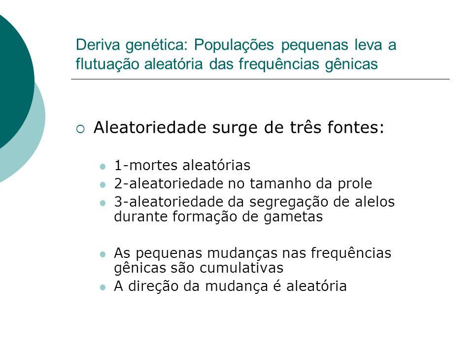 Deriva genética: Populações pequenas leva a flutuação aleatória das frequências gênicas Aleatoriedade surge de três fontes: 1-mortes aleatórias 2-alea