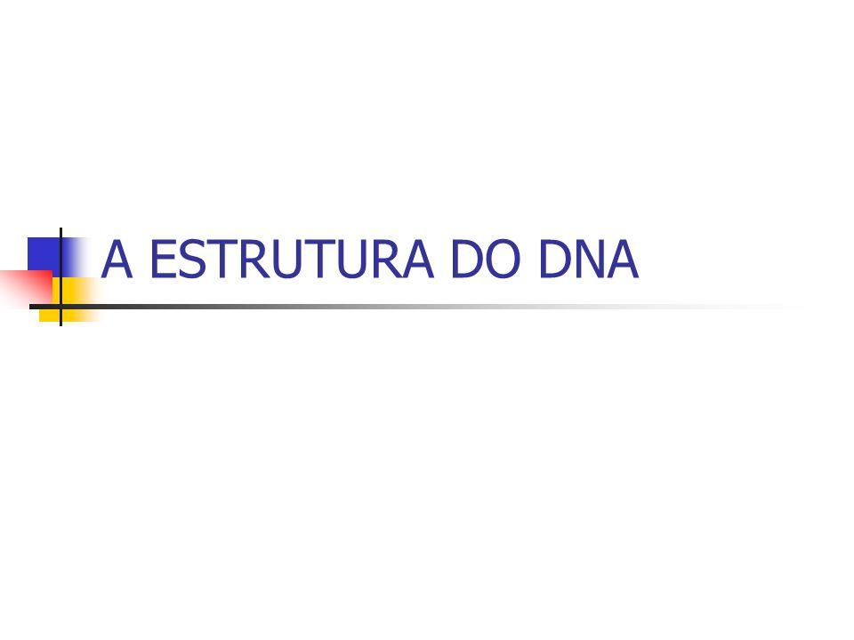 A ESTRUTURA DO DNA