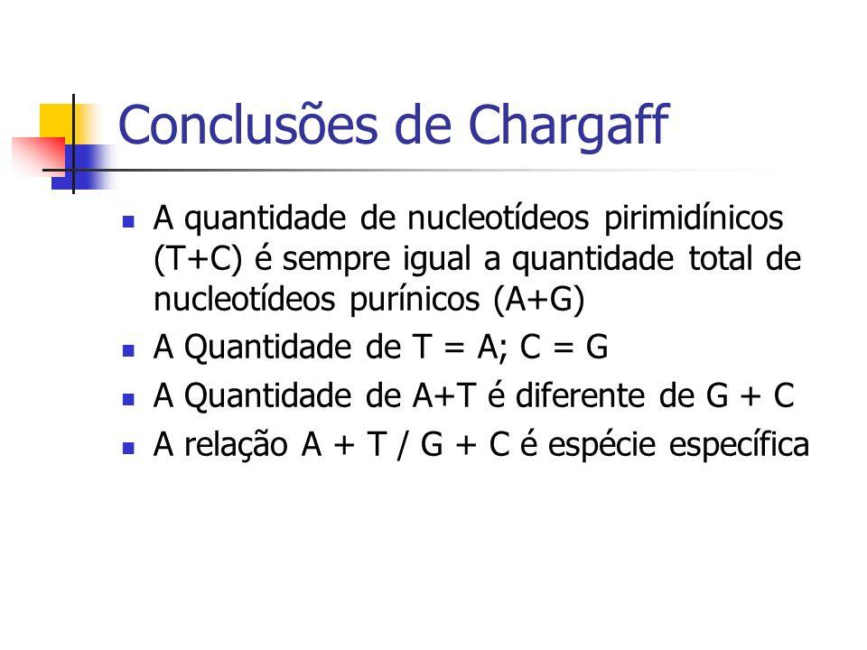 Conclusões de Chargaff A quantidade de nucleotídeos pirimidínicos (T+C) é sempre igual a quantidade total de nucleotídeos purínicos (A+G) A Quantidade