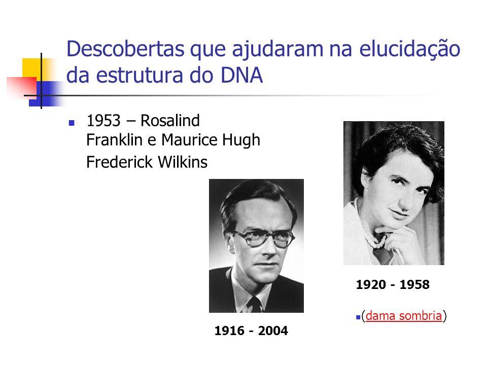 Descobertas que ajudaram na elucidação da estrutura do DNA 1953 – Rosalind Franklin e Maurice Hugh Frederick Wilkins 1920 - 1958 1916 - 2004 (dama som