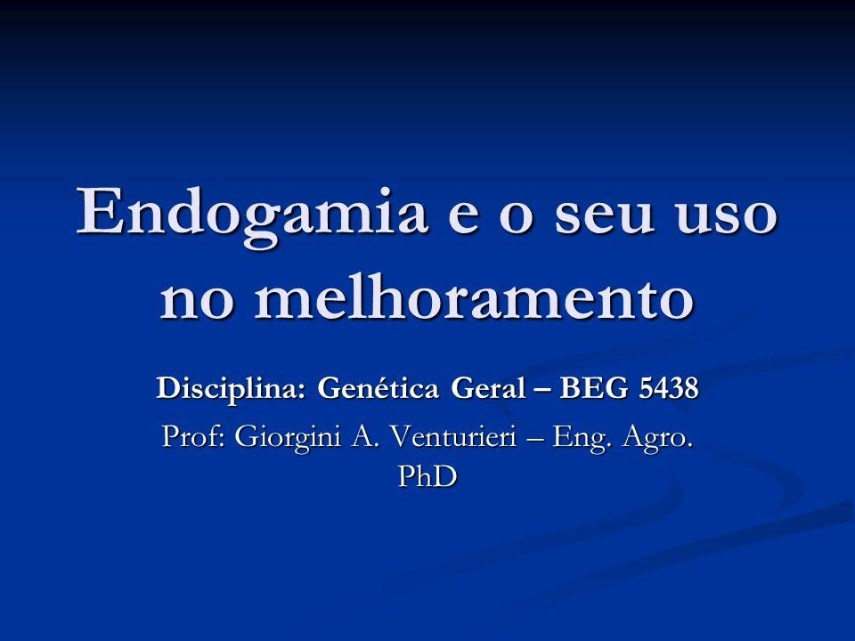Endogamia e a diminuição da heterozigosidade Do cruzamento de DD x dd F 1 Dd (100% heterozigotos) F 2 1DD+2Dd+1dd (2/4 = 50% são heretozigotos) Autopolinizando F 3 4DD+2x(1DD+2Dd+1dd)+4dd (4/16 = 25% são heterozigotos) Autopolinizando F 4 6x4DD+4x(1DD+2Dd+1dd)+6x4dd (8/64 = 12,5% são heterozigotos) Conclusão: A cada geração a frequência de heterozigotos é reduzida a metade