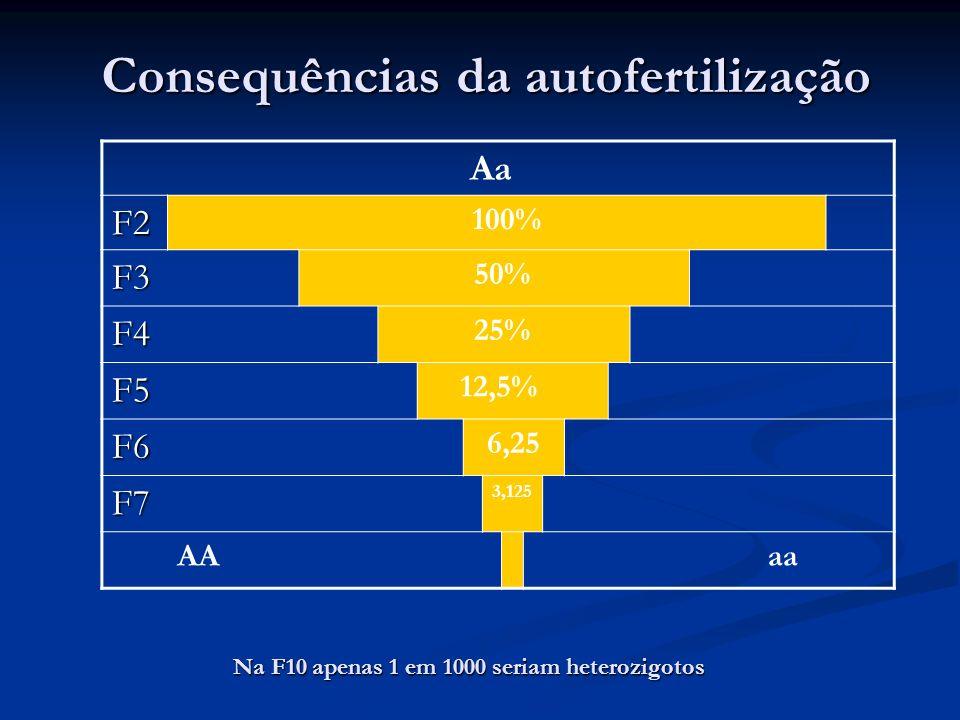 Consequências da autofertilização Aa F2 100% F3 50% F4 25% F5 12,5% F6 6,25 F7 3,125 AAaa Na F10 apenas 1 em 1000 seriam heterozigotos