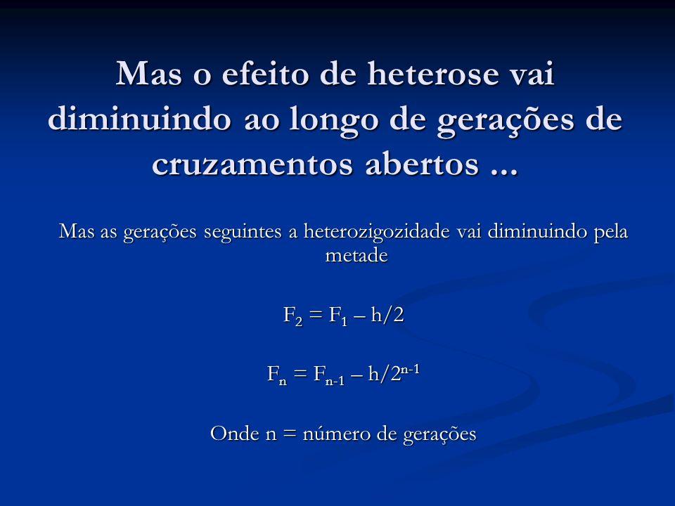Efeito de heterose ou vigor híbrido Altura da planta (cm) Geração 67,9 P1P1P1P1 58,3 P2P2P2P2 94,6 F1F1F1F1 82,0 F2F2F2F2 77,6 F3F3F3F3 76,8 F 4..