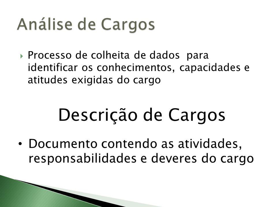 Processo de colheita de dados para identificar os conhecimentos, capacidades e atitudes exigidas do cargo Descrição de Cargos Documento contendo as at