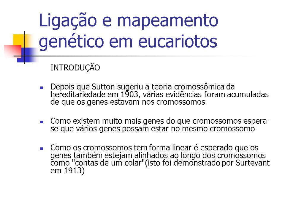Ligação e mapeamento genético em eucariotos INTRODUÇÃO Depois que Sutton sugeriu a teoria cromossômica da hereditariedade em 1903, várias evidências f