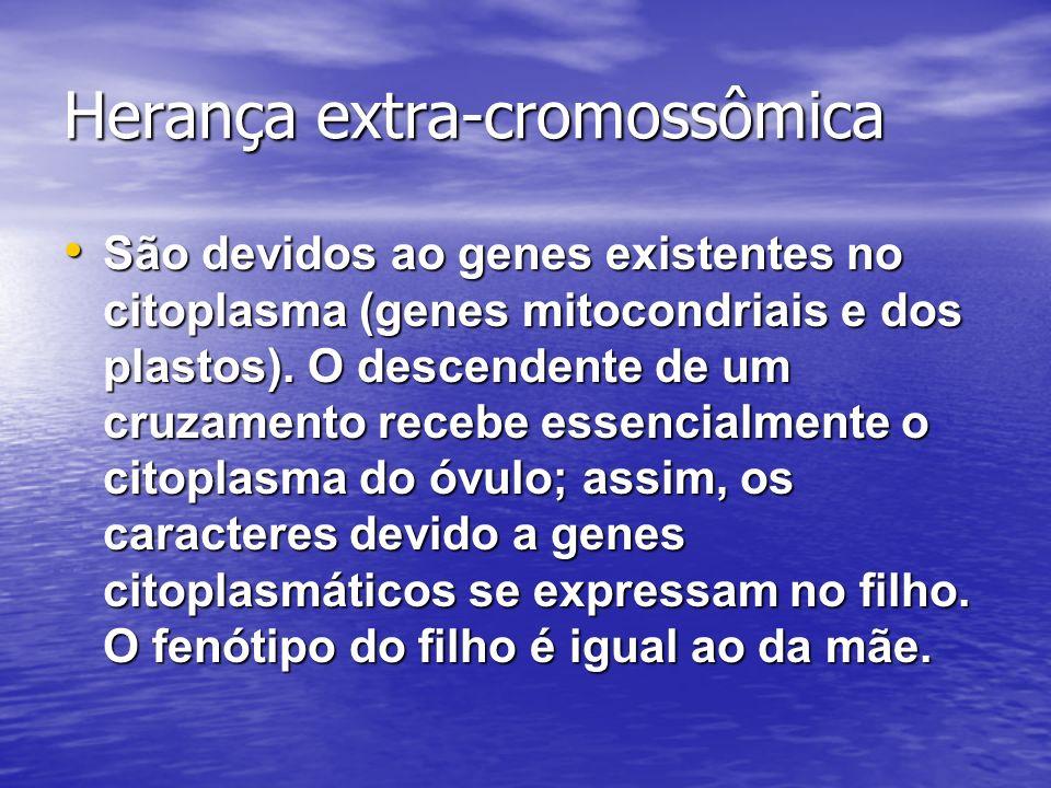 Herança extra-cromossômica São devidos ao genes existentes no citoplasma (genes mitocondriais e dos plastos). O descendente de um cruzamento recebe es