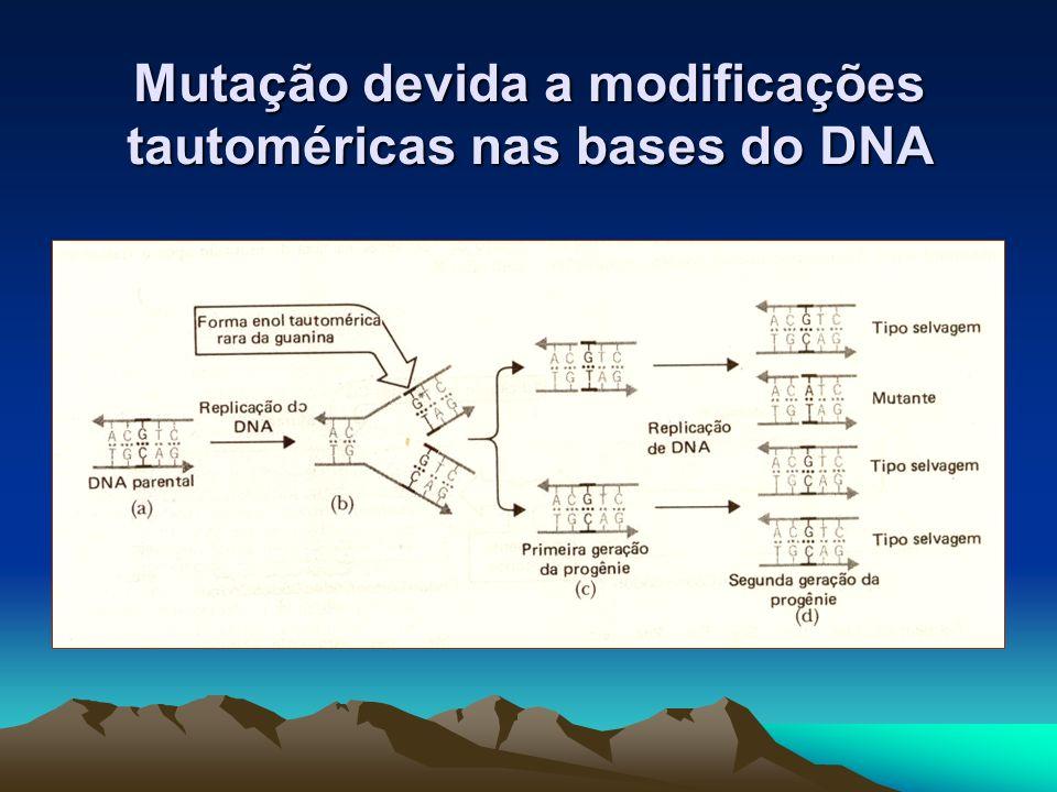 Mutação devida a modificações tautoméricas nas bases do DNA