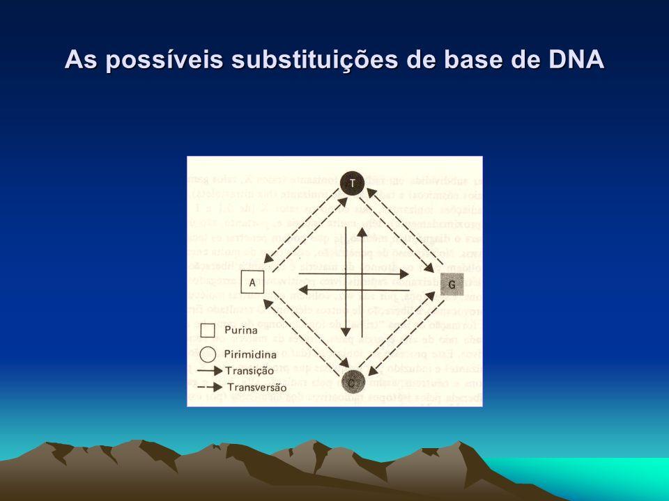 As possíveis substituições de base de DNA